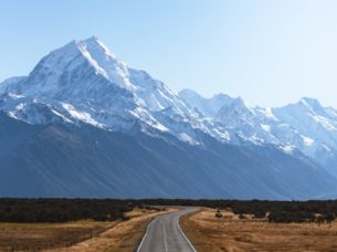 Expat Academy New Zealand: Government Announces ANZSCO Review